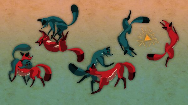 Foxes_sequence